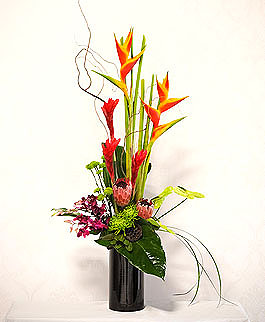 roseville florist tropical
