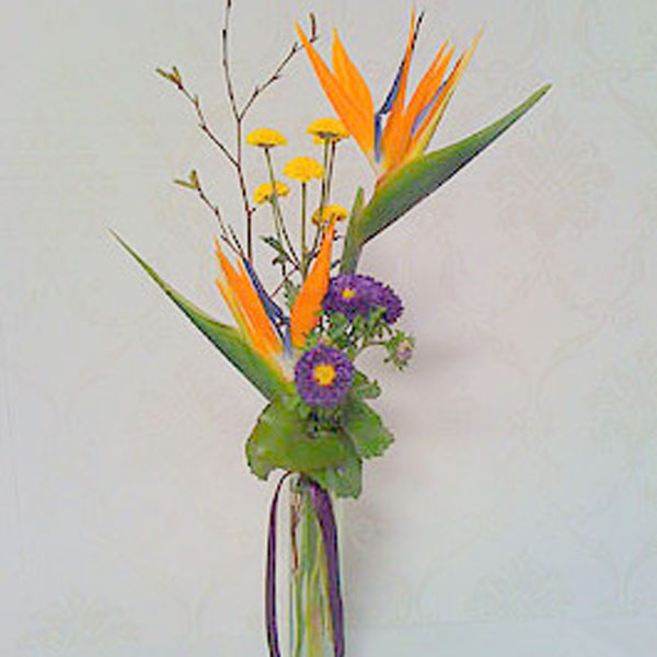 Bird of Paradise Bud Vase - Ambience Floral Design & Gifts